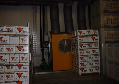 Fruit packed in boxes stored in coolroom Renmark South Australia