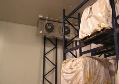 Installation of double stacking shelves in coolroom for skins